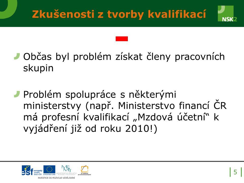 Občas byl problém získat členy pracovních skupin Problém spolupráce s některými ministerstvy (např.