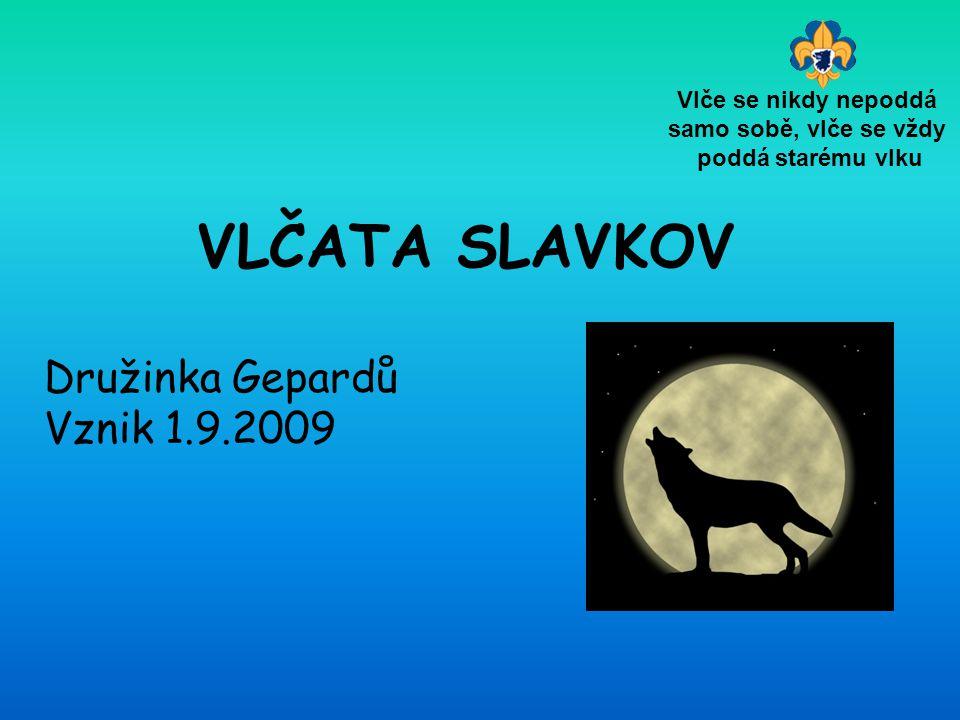 VLČATA SLAVKOV Družinka Gepardů Vznik 1.9.2009 Vlče se nikdy nepoddá samo sobě, vlče se vždy poddá starému vlku