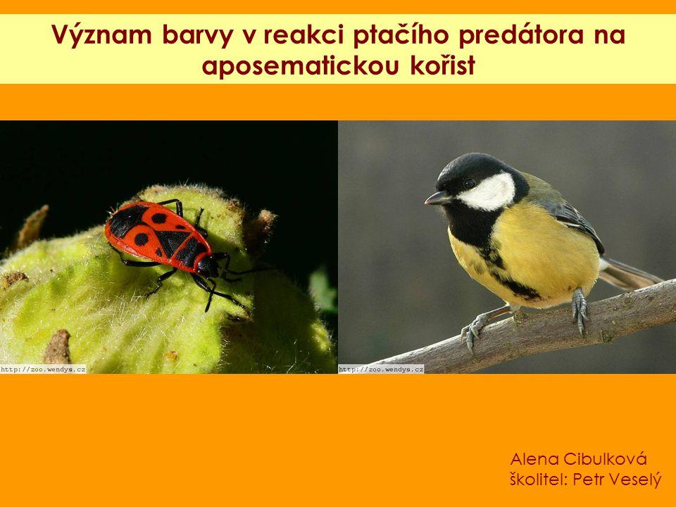 Význam barvy v reakci ptačího predátora na aposematickou kořist Alena Cibulková školitel: Petr Veselý