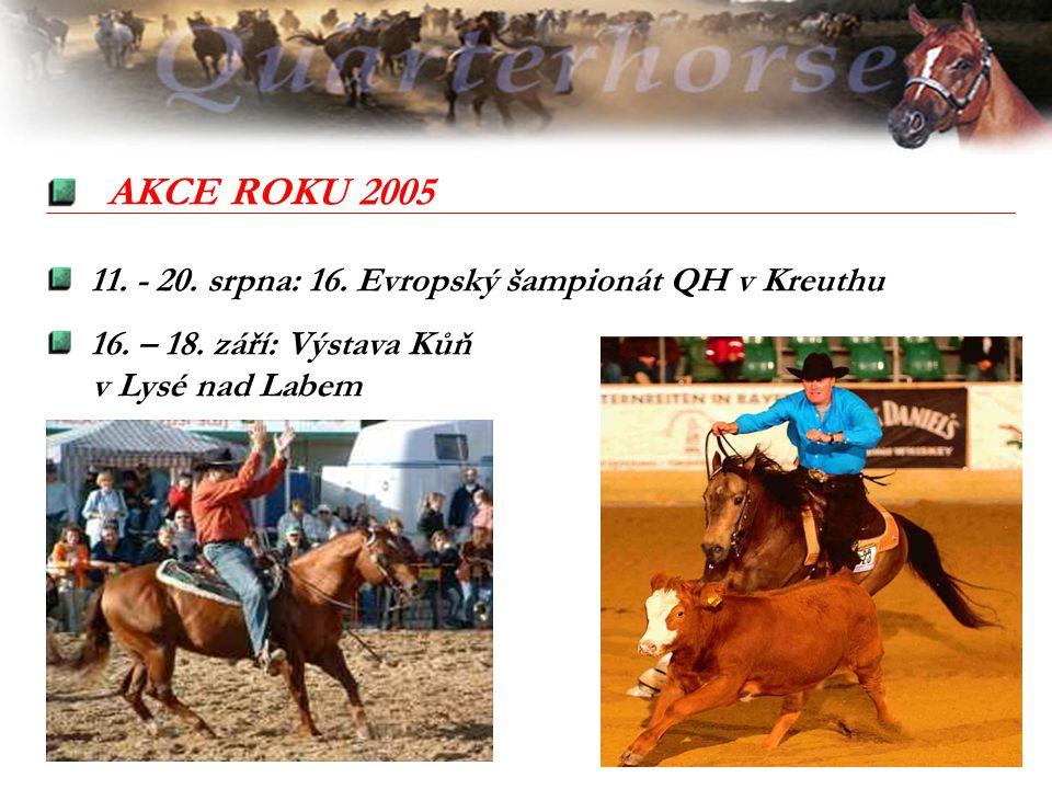 AKCE ROKU 2005 11. - 20. srpna: 16. Evropský šampionát QH v Kreuthu 16. – 18. září: Výstava Kůň v Lysé nad Labem