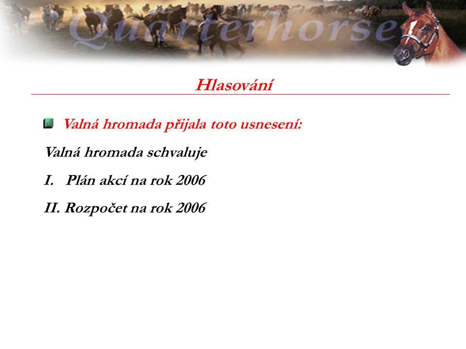 Hlasování Valná hromada přijala toto usnesení: Valná hromada schvaluje I. Plán akcí na rok 2006 II. Rozpočet na rok 2006