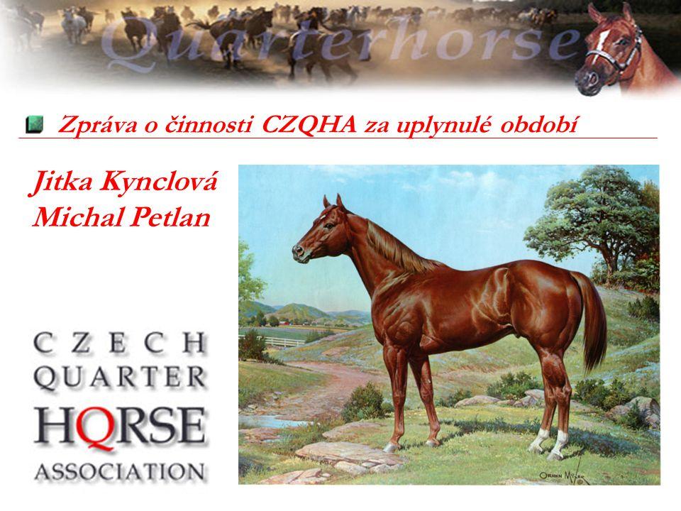 Zpráva o činnosti CZQHA za uplynulé období Jitka Kynclová Michal Petlan