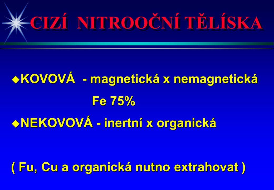 CIZÍ NITROOČNÍ TĚLÍSKA u KOVOVÁ - magnetická x nemagnetická Fe 75% Fe 75% u NEKOVOVÁ - inertní x organická ( Fu, Cu a organická nutno extrahovat )