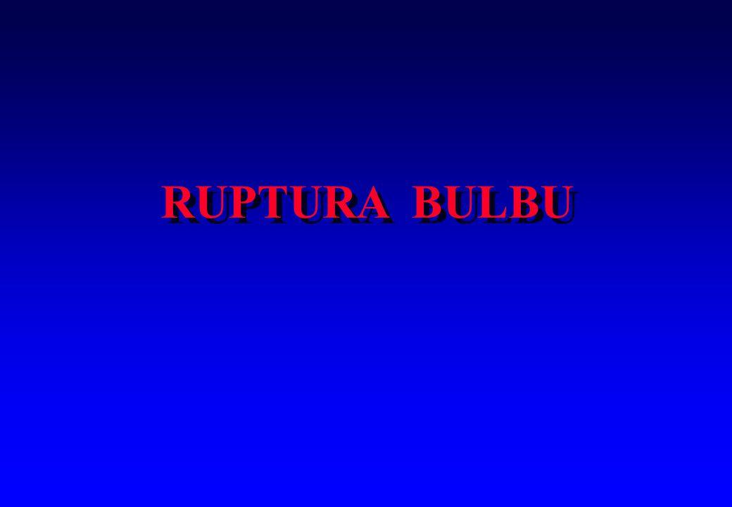 RUPTURA BULBU