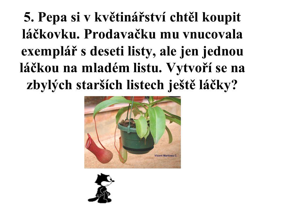 5. Pepa si v květinářství chtěl koupit láčkovku.