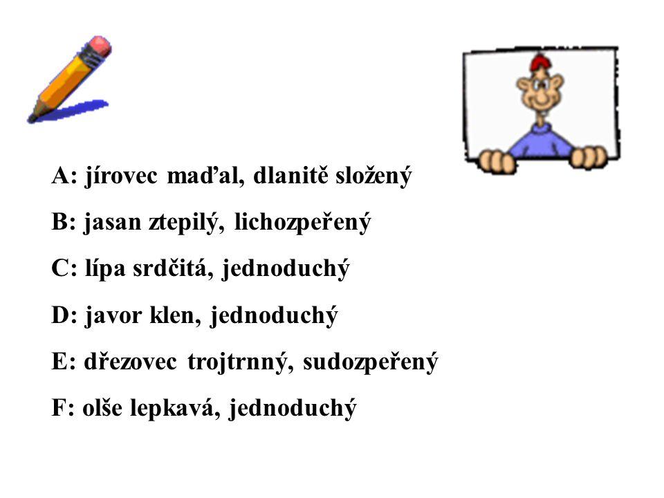 ŘEŠENÍ A: jírovec maďal, dlanitě složený B: jasan ztepilý, lichozpeřený C: lípa srdčitá, jednoduchý D: javor klen, jednoduchý E: dřezovec trojtrnný, sudozpeřený F: olše lepkavá, jednoduchý