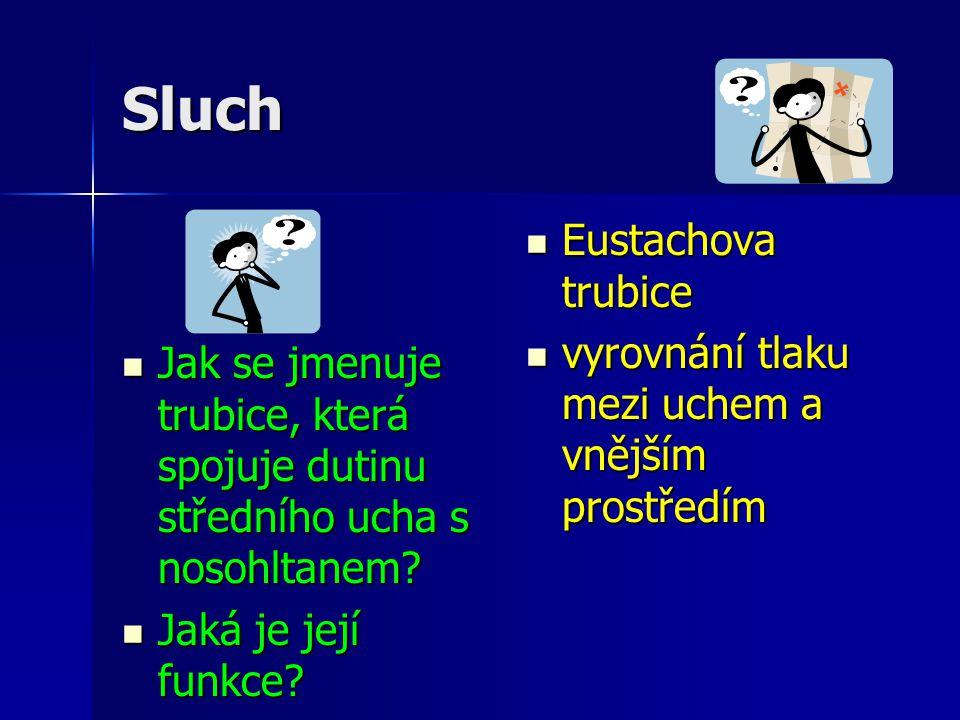 Sluch Jak se jmenuje trubice, která spojuje dutinu středního ucha s nosohltanem? Jak se jmenuje trubice, která spojuje dutinu středního ucha s nosohlt