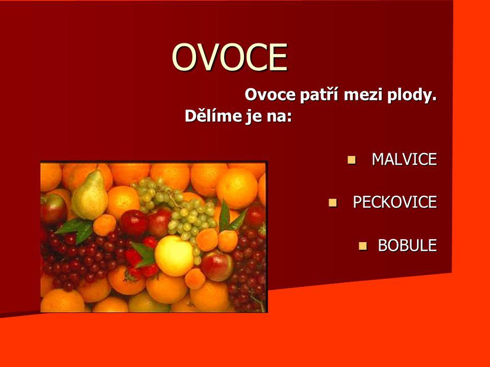 OVOCE Ovoce patří mezi plody. Dělíme je na: MALVICE MALVICE PECKOVICE PECKOVICE BOBULE BOBULE