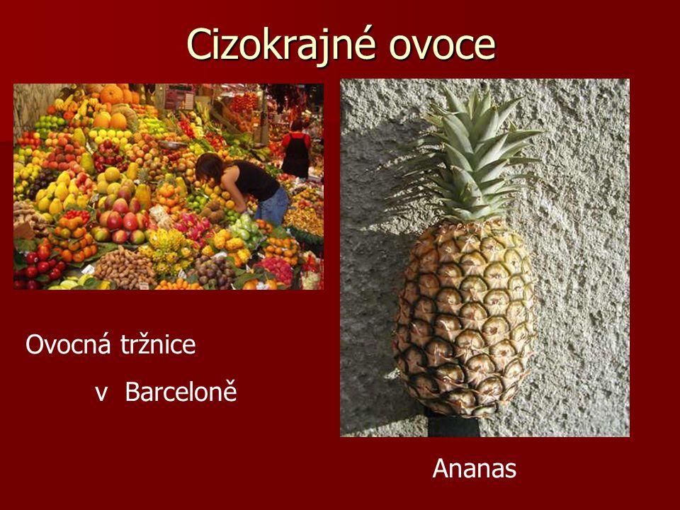 Cizokrajné ovoce Ovocná tržnice v Barceloně Ananas