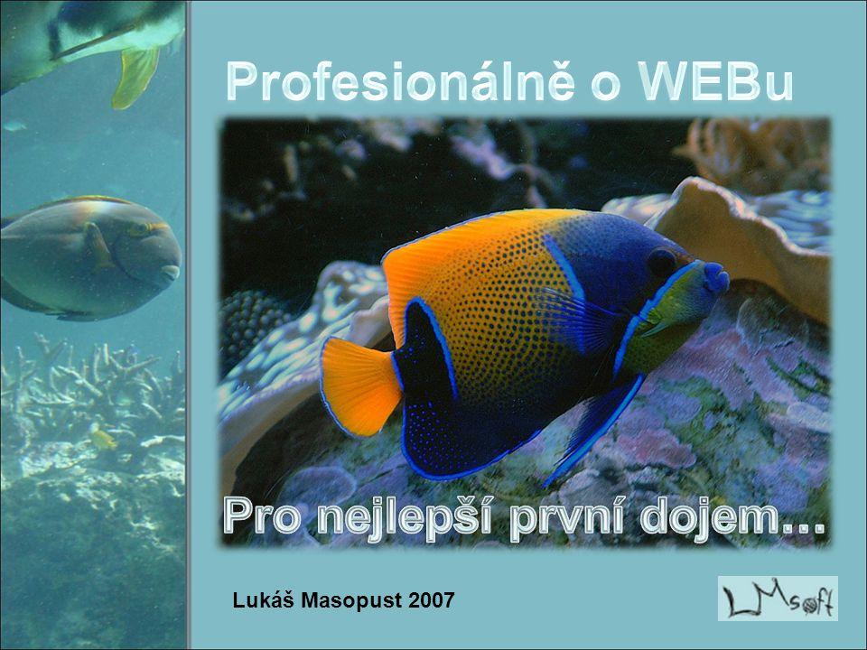 Lukáš Masopust 2007