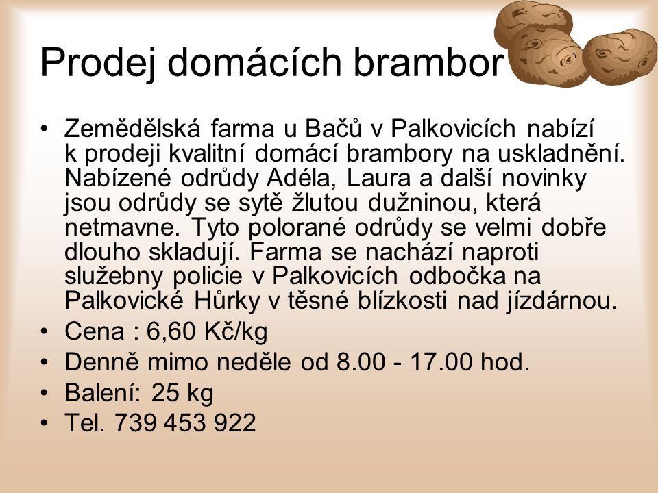 Prodej domácích brambor Zemědělská farma u Bačů v Palkovicích nabízí k prodeji kvalitní domácí brambory na uskladnění. Nabízené odrůdy Adéla, Laura a