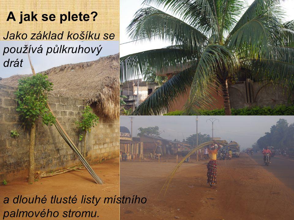 A jak se plete? Jako základ košíku se používá půlkruhový drát a dlouhé tlusté listy místního palmového stromu.