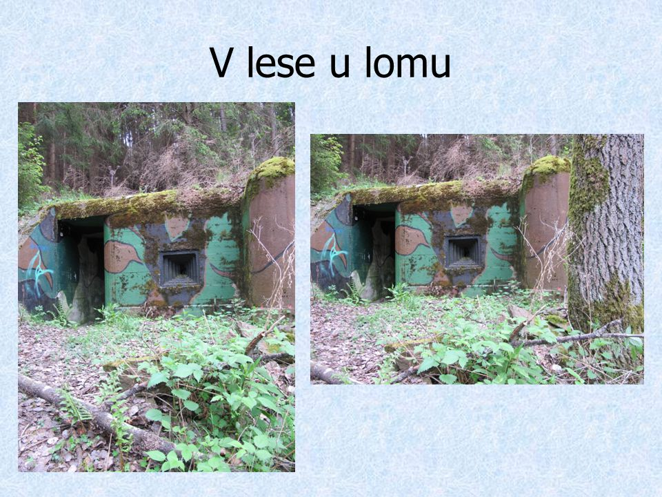 V lese u lomu
