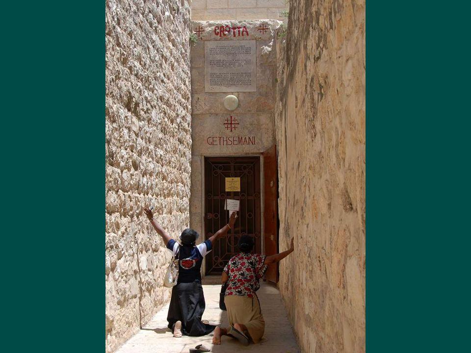 V Getsemanské zahradě (v hebrejštině lisovna oleje) je olivový háj, Podle Bible zde Ježíš bděl a modlil se tu noc, kdy byl Jidášem zrazen, zatčen a později ukřižovánBibleJežíšukřižován