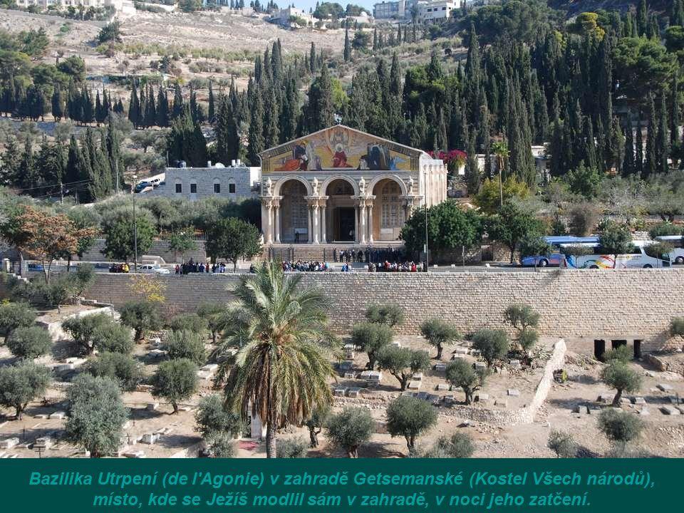 Bazilika Utrpení (de l Agonie) v zahradě Getsemanské (Kostel Všech národů), místo, kde se Ježíš modlil sám v zahradě, v noci jeho zatčení.