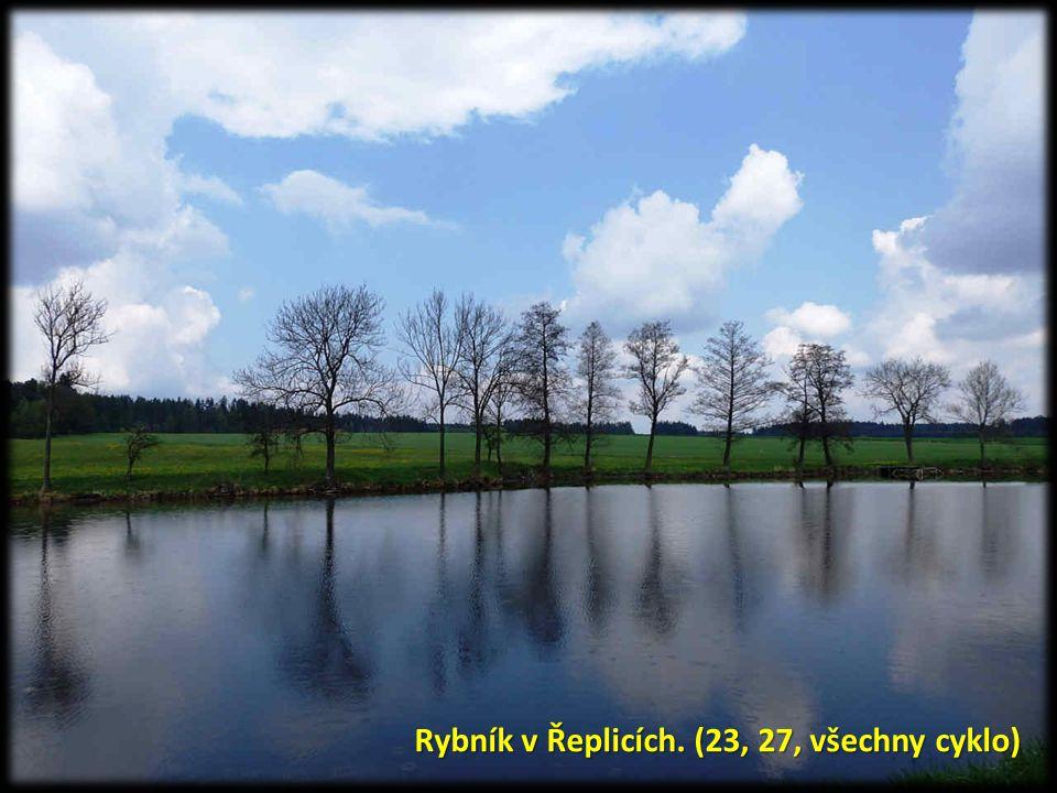Rybník v Řeplicích. (23, 27, všechny cyklo)