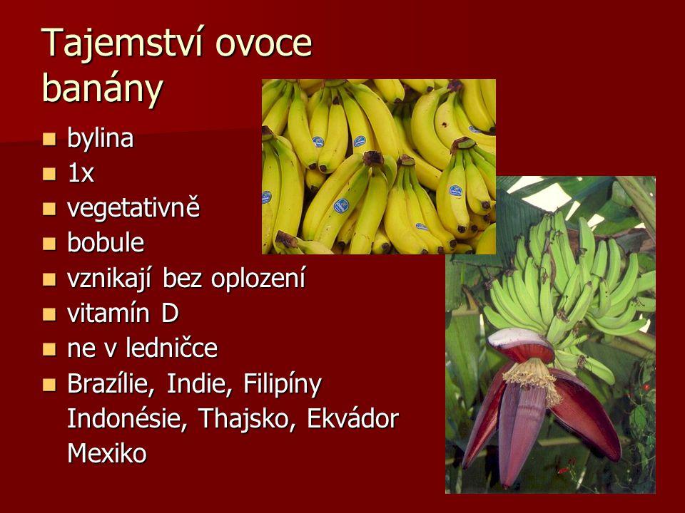 bylina bylina 1x 1x vegetativně vegetativně bobule bobule vznikají bez oplození vznikají bez oplození vitamín D vitamín D ne v ledničce ne v ledničce