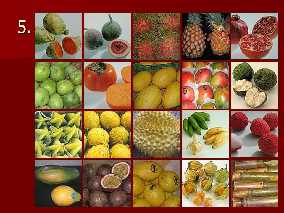 Exotické ovoce 1.