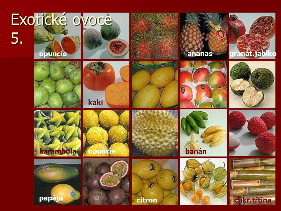 opuncie banán opuncie kaki ananasgranát.jablko karambola papája citroncukr.třtina Exotické ovoce 5.