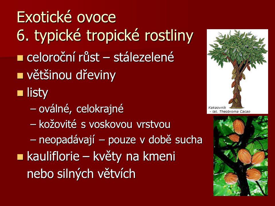 Exotické ovoce 6. typické tropické rostliny celoroční růst – stálezelené celoroční růst – stálezelené většinou dřeviny většinou dřeviny listy listy –o