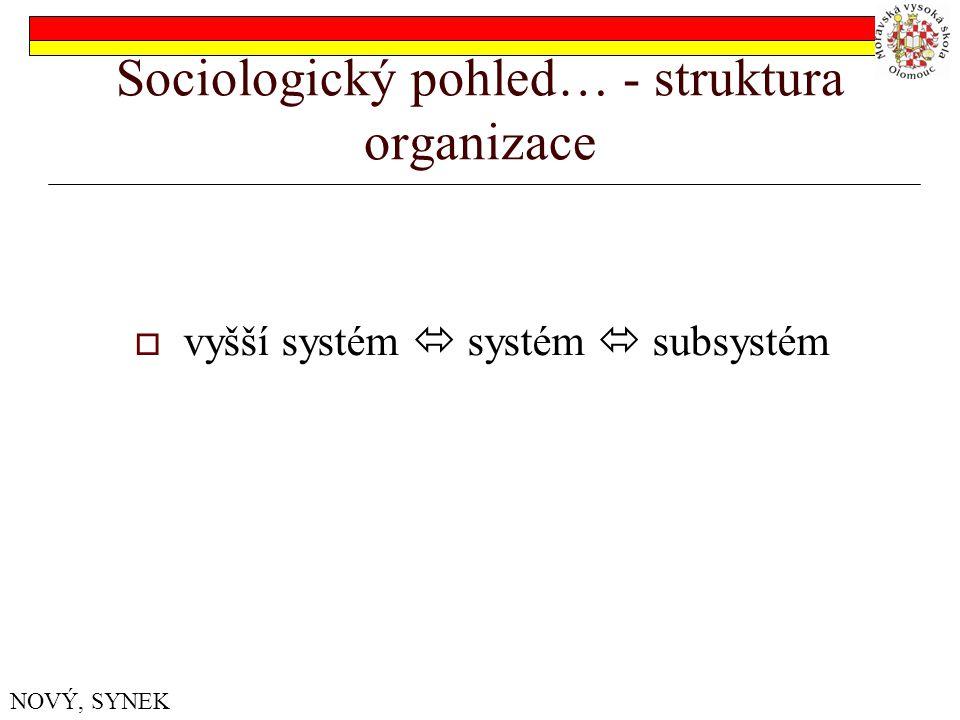 Sociologický pohled… - struktura organizace  vyšší systém  systém  subsystém NOVÝ, SYNEK