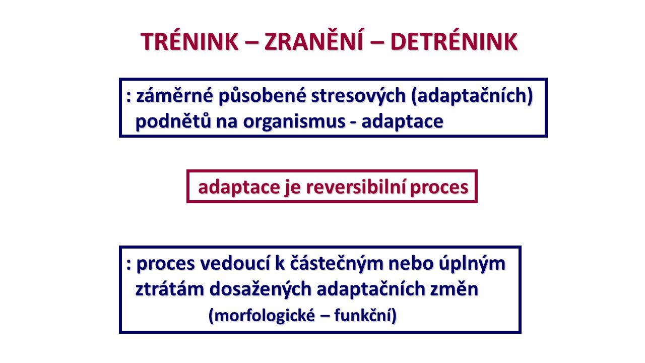TRÉNINK – ZRANĚNÍ – DETRÉNINK : záměrné působené stresových (adaptačních) podnětů na organismus - adaptace podnětů na organismus - adaptace adaptace j