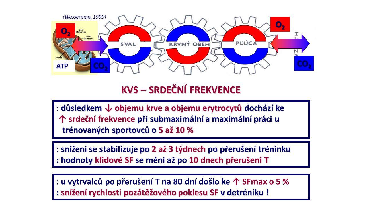 (Wasserman, 1999) ATP O2O2O2O2 O2O2O2O2 CO 2 KVS – SRDEČNÍ FREKVENCE : důsledkem ↓ objemu krve a objemu erytrocytů dochází ke ↑ srdeční frekvence při
