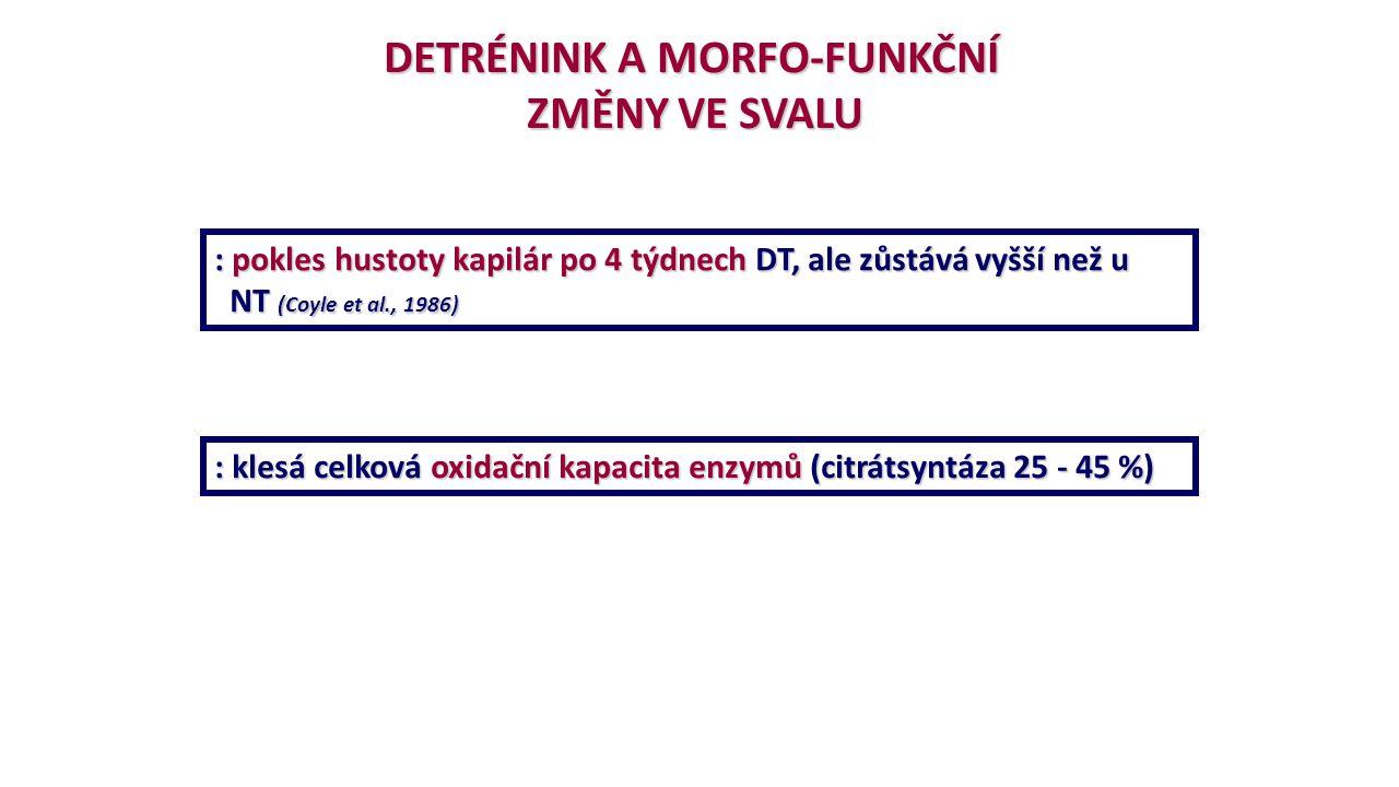 DETRÉNINK A MORFO-FUNKČNÍ ZMĚNY VE SVALU : pokles hustoty kapilár po 4 týdnech DT, ale zůstává vyšší než u NT (Coyle et al., 1986) NT (Coyle et al., 1