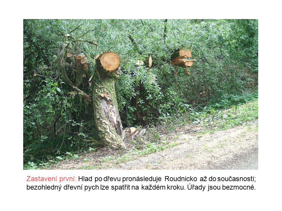 Zastavení druhé: Vandalismus obyvatel je ve snaze o získání dřeva jakýmkoli způsobem až neskutečný - plížíce se noční tmou, snaží se tito vylamovat osamělé stromy i celé stožáry telefonního vedení.