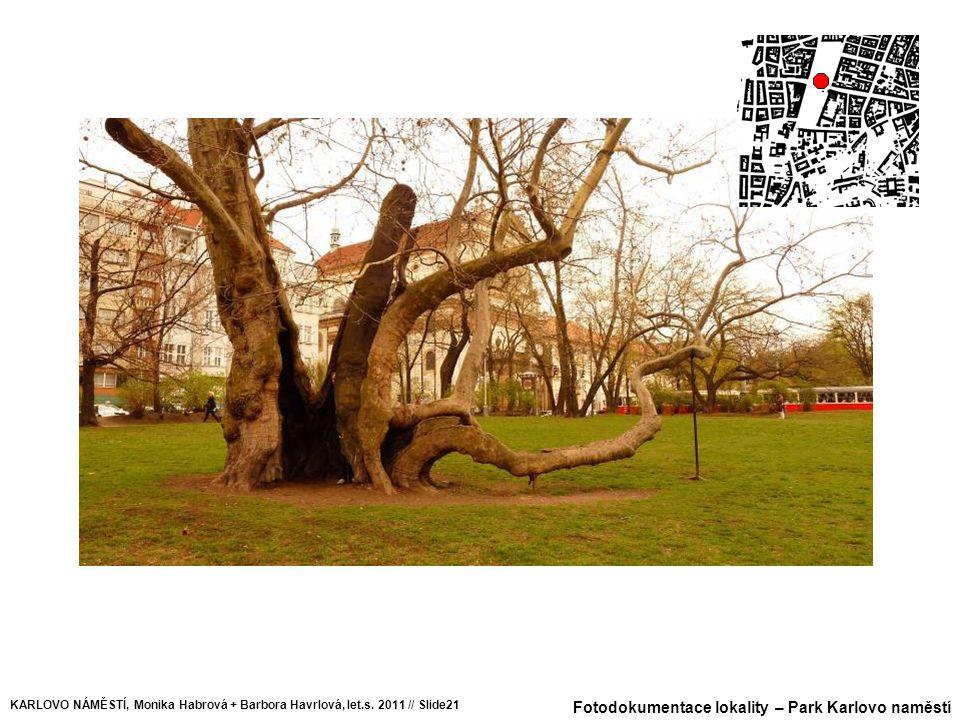 Fotodokumentace lokality – Park Karlovo naměstí KARLOVO NÁMĚSTÍ, Monika Habrová + Barbora Havrlová, let.s. 2011 // Slide21