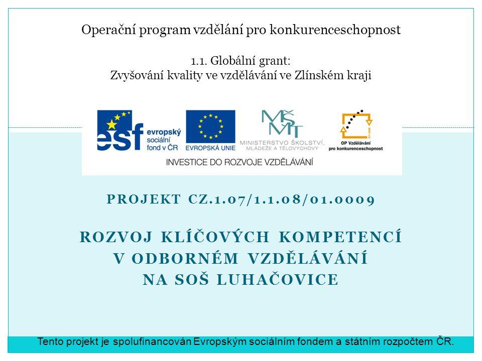 Operační program vzdělání pro konkurenceschopnost 1.1. Globální grant: Zvyšování kvality ve vzdělávání ve Zlínském kraji PROJEKT CZ.1.07/1.1.08/01.000