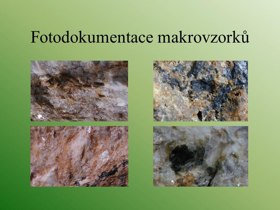Fotodokumentace makrovzorků
