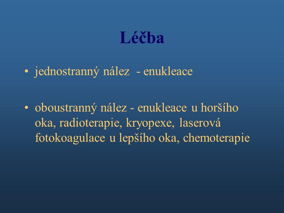 Léčba jednostranný nález - enukleace oboustranný nález - enukleace u horšího oka, radioterapie, kryopexe, laserová fotokoagulace u lepšího oka, chemoterapie