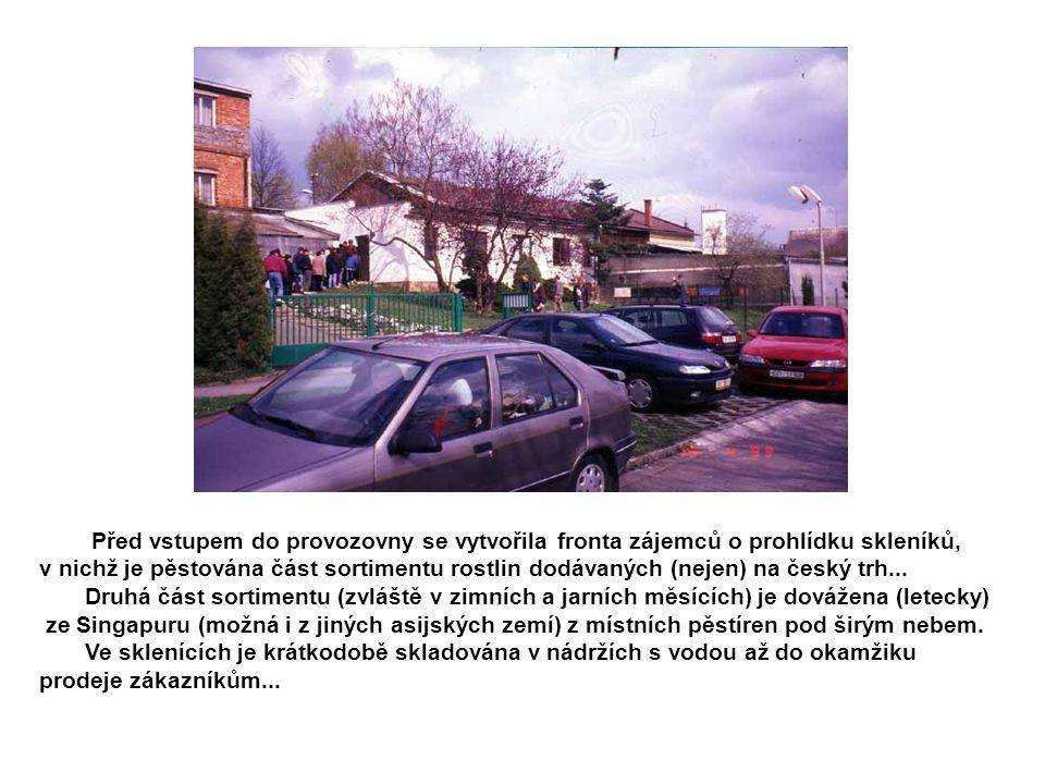 Před vstupem do provozovny se vytvořila fronta zájemců o prohlídku skleníků, v nichž je pěstována část sortimentu rostlin dodávaných (nejen) na český