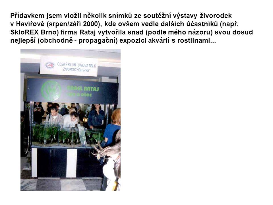 Přídavkem jsem vložil několik snímků ze soutěžní výstavy živorodek v Havířově (srpen/září 2000), kde ovšem vedle dalších účastníků (např. SkloREX Brno