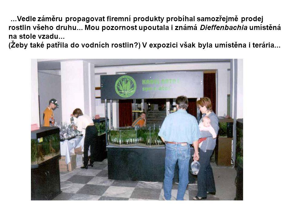 ...Vedle záměru propagovat firemní produkty probíhal samozřejmě prodej rostlin všeho druhu... Mou pozornost upoutala i známá Dieffenbachia umístěná na