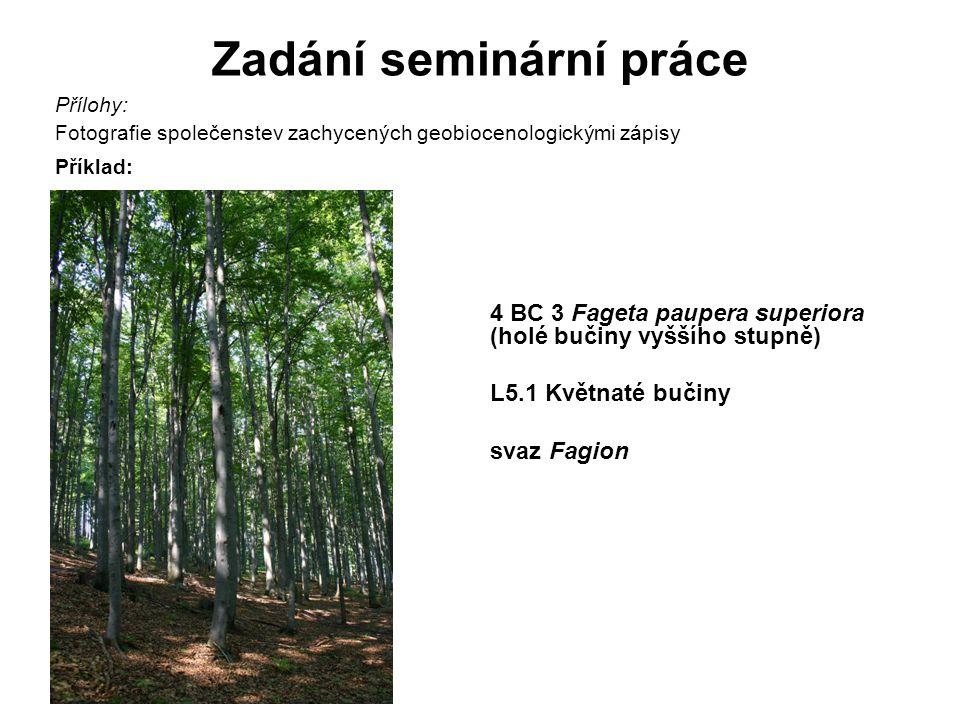 Zadání seminární práce Přílohy: Fotografie společenstev zachycených geobiocenologickými zápisy Příklad: 4 BC 3 Fageta paupera superiora (holé bučiny vyššího stupně) L5.1 Květnaté bučiny svaz Fagion