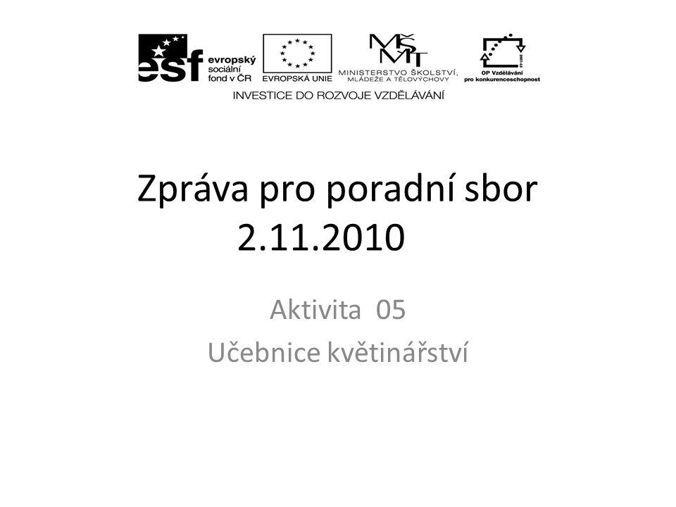 aktivita 05 Rozsah proběhlých jednání Práce na kapitolách Těžkosti a nedostatky Cíle na období do ledna 2011
