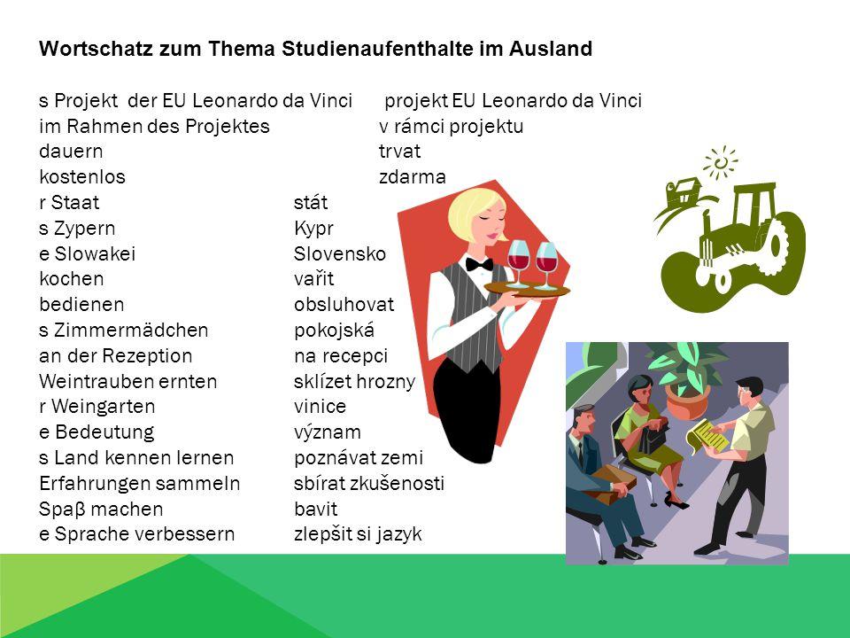 Wortschatz zum Thema Studienaufenthalte im Ausland Wie ist das tschechisch.