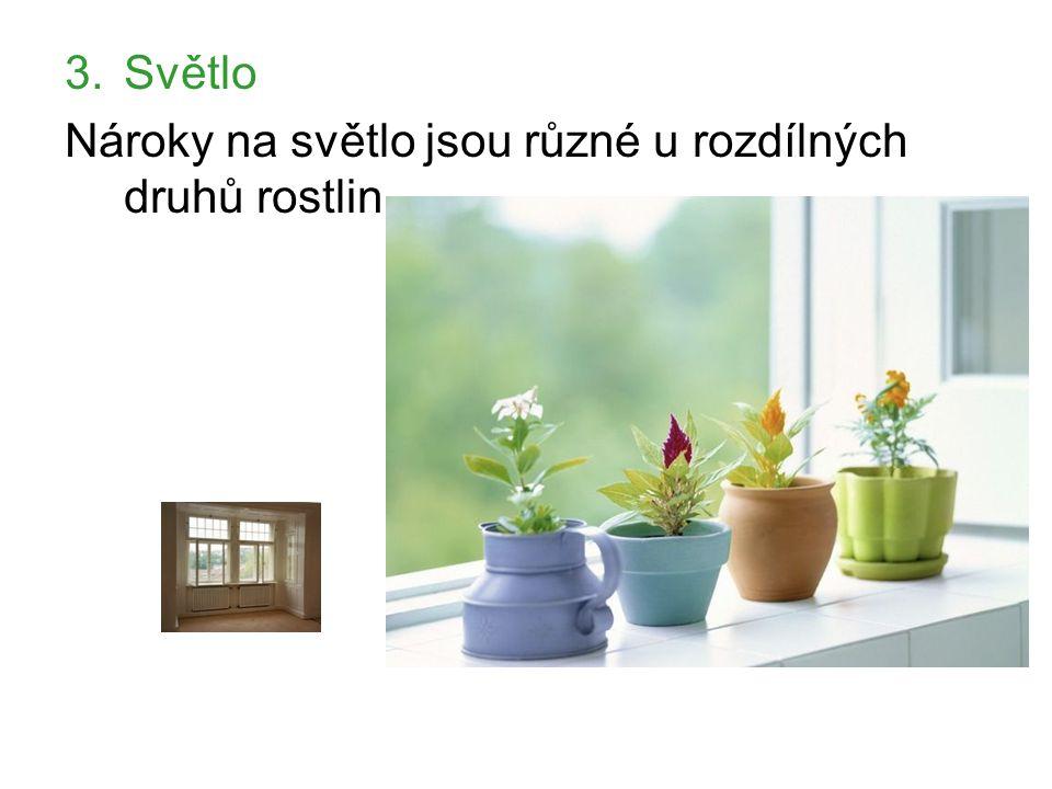 3.Světlo Nároky na světlo jsou různé u rozdílných druhů rostlin.