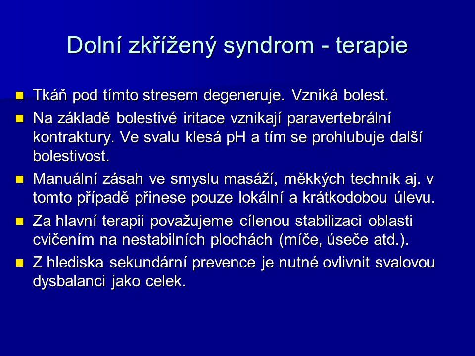 Svalové syndromy Vrstvový syndrom Vrstvový syndrom Střídají se vrstvy hypertrofických a hypotrofických svalů Střídají se vrstvy hypertrofických a hypotrofických svalů Dorzální strana Dorzální strana Hypertrofické ischiokrurální svaly Hypertrofické ischiokrurální svaly Oslabené gluteální svaly Oslabené gluteální svaly Hypertrofické vzpřimovače torakolumbální oblasti Hypertrofické vzpřimovače torakolumbální oblasti Oslabené mezilopatkové svalstvo Oslabené mezilopatkové svalstvo Hypertrofické horní fixátory ramenního pletence Hypertrofické horní fixátory ramenního pletence