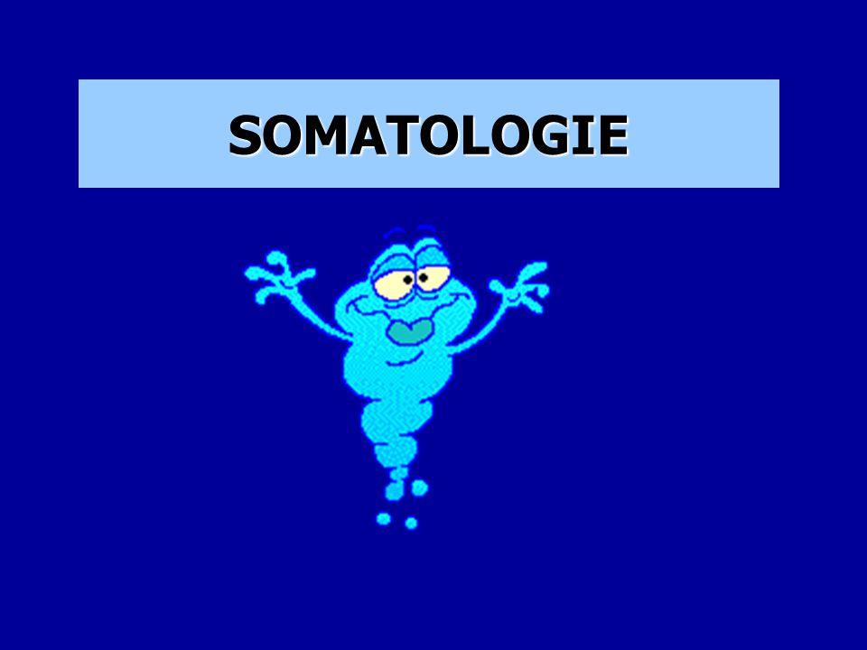 """1.Fáze meiosy: spermie a vajíčko přinese 23+23 chromozomů, které se zkříží …PAK proběhne S FÁZE """"velké mitosy= zdvojení chromozomů a G2 FÁZE """"velké mitosy=hromadění energie a pak METAFÁZE """"malé mitosy 1.Fáze mitosy -profáze: chromatin jádra vytváří vlákna chromozomů, rozpadne se jaderní membrána, zanikne jadérko."""