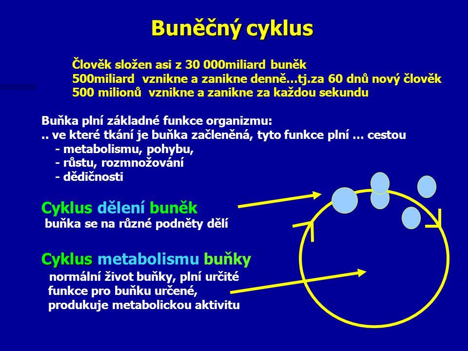 Člověk složen asi z 30 000miliard buněk 500miliard vznikne a zanikne denně…tj.za 60 dnů nový člověk 500 milionů vznikne a zanikne za každou sekundu Buňka plní základné funkce organizmu:..