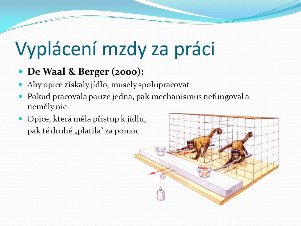 Vyplácení mzdy za práci De Waal & Berger (2000): Aby opice získaly jídlo, musely spolupracovat Pokud pracovala pouze jedna, pak mechanismus nefungoval
