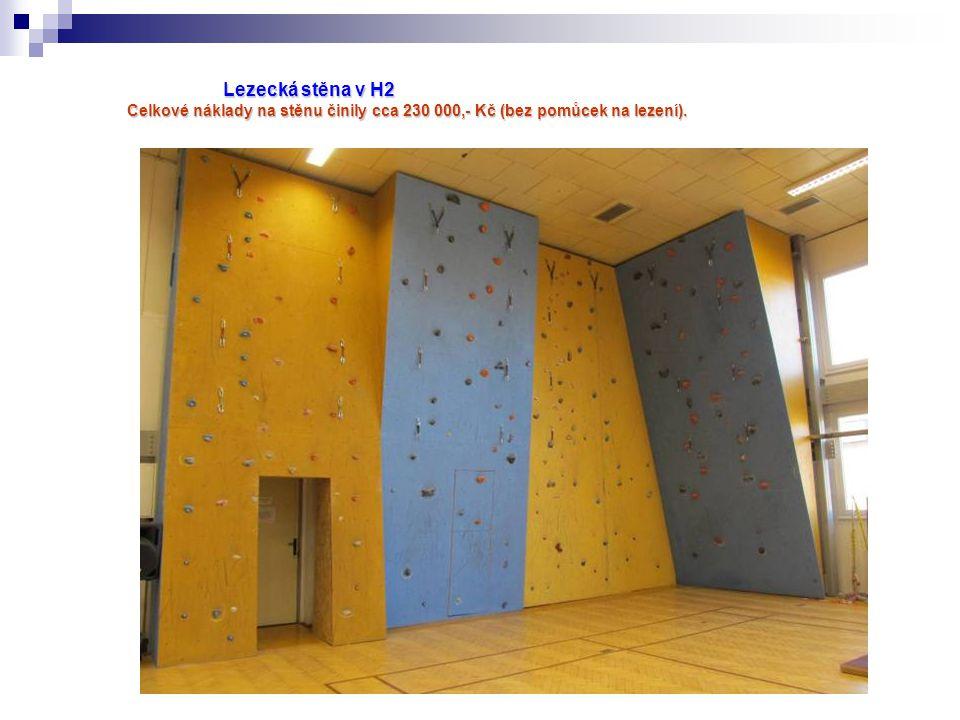 Lezecká stěna v H2 Celkové náklady na stěnu činily cca 230 000,- Kč (bez pomůcek na lezení).