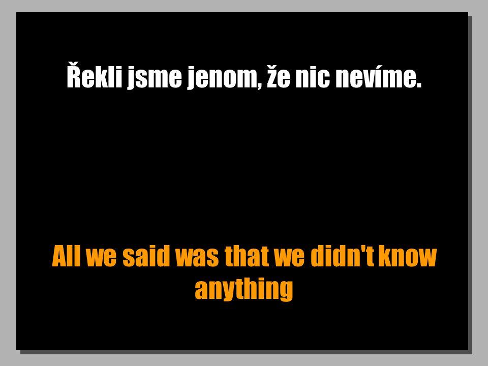 Řekli jsme jenom, že nic nevíme. All we said was that we didn't know anything