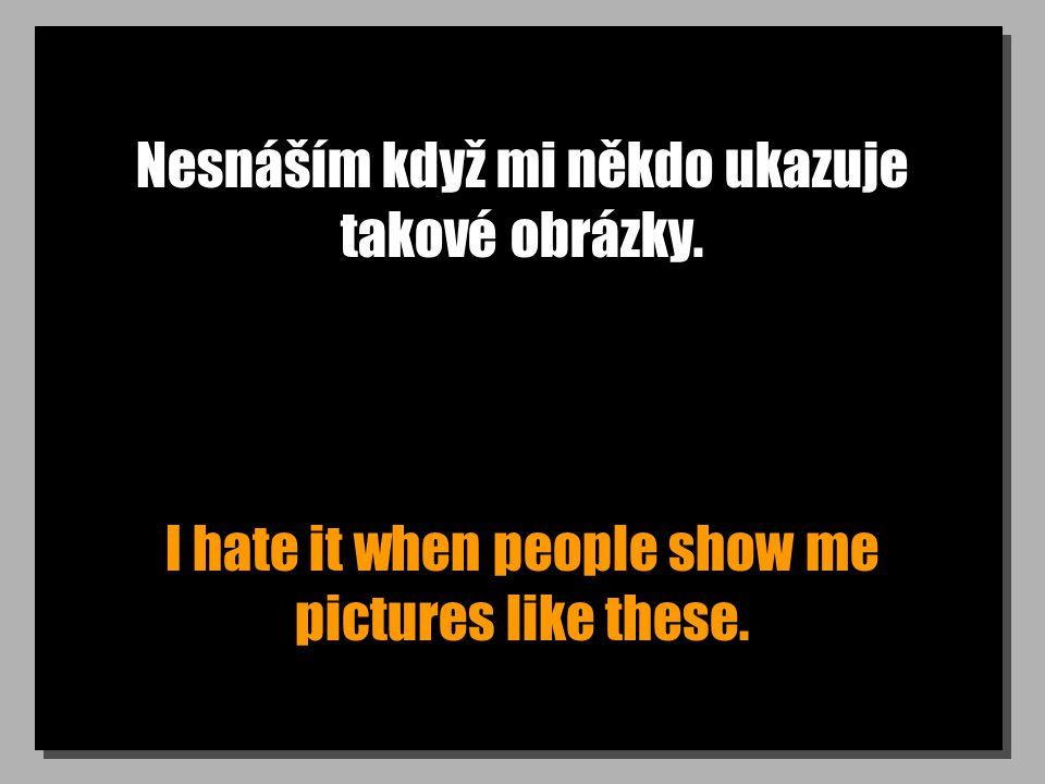 Nesnáším když mi někdo ukazuje takové obrázky. I hate it when people show me pictures like these.