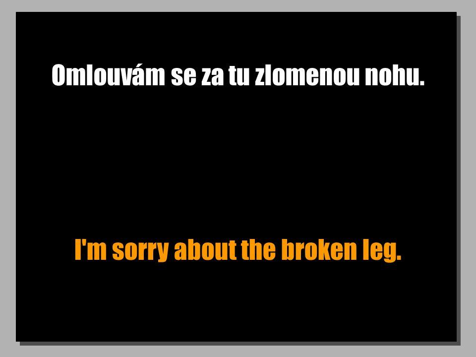 Omlouvám se za tu zlomenou nohu. I'm sorry about the broken leg.