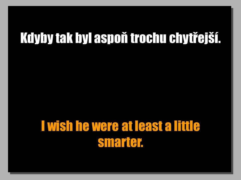Kdyby tak byl aspoň trochu chytřejší. I wish he were at least a little smarter.