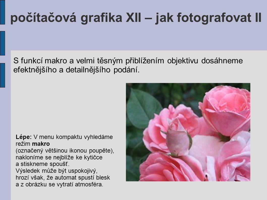 počítačová grafika XII – jak fotografovat II Správně: Vyzkoušíme si, z jaké nejkratší vzdálenosti je kompakt schopen na květinu zaostřit (ať už v režimu makro nebo mimo něj).